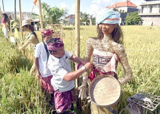 Nusabali.com - lestarikan-subak-digelar-lomba-lelakut-pindekan-dan-sunari