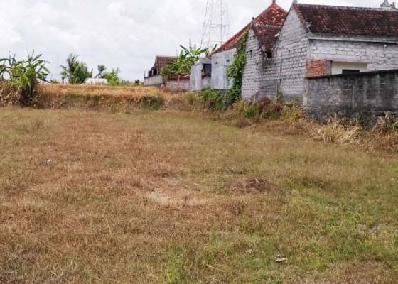 Nusabali.com - 2726-subak-berusaha-bertahan