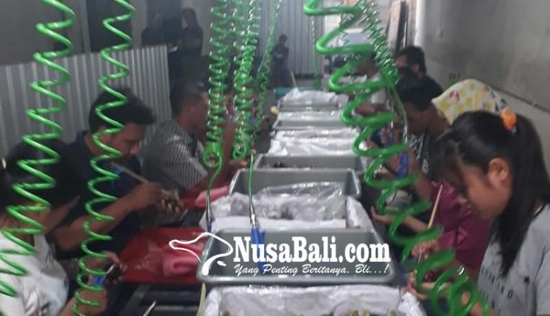 www.nusabali.com-panen-raya-petani-manggis-jaga-pasar-ekspor