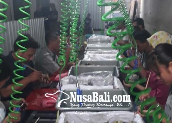 Nusabali.com - panen-raya-petani-manggis-jaga-pasar-ekspor