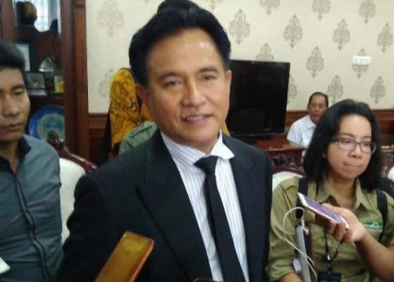Nusabali.com - yusril-jadi-pengacara-jokowi-maruf
