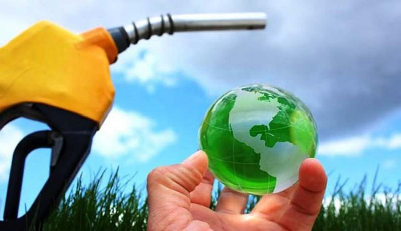 www.nusabali.com-pemerintah-ajak-china-pakai-biodesel