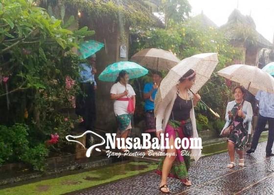 Nusabali.com - warga-penglipuran-sewakan-payung-ke-wisatawan