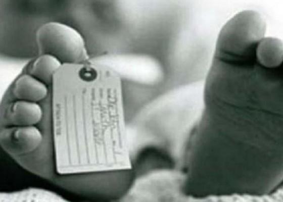 Nusabali.com - sidang-ibu-pembunuh-bayi-kembar