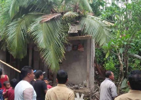 Nusabali.com - kelapa-tumbang-penghuni-rumah-terluka