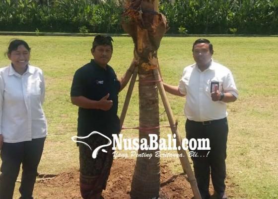 Nusabali.com - pln-serahkan-bantuan-csr-program-penghijauan