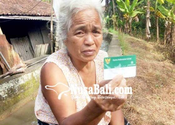 Nusabali.com - hidup-sebatang-kara-lansia-belum-dapat-bantuan-rastra
