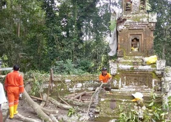 Nusabali.com - padmasana-tertimpa-pohon-bunut