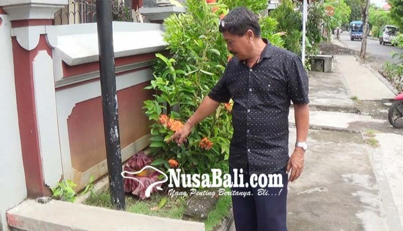 www.nusabali.com-bunga-bangkai-tumbuh-di-depan-kantor-lpd-banjar-tengah