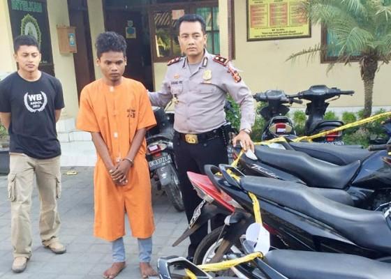 Nusabali.com - polisi-amankan-puluhan-motor-curian-hendak-diselundupkan-ke-sumba-seorang-pelaku-dijuk