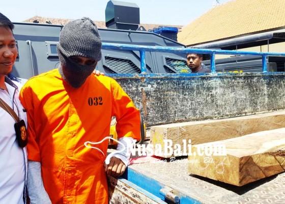 Nusabali.com - pelaku-pembalakan-hutan-di-seririt-ditangkap