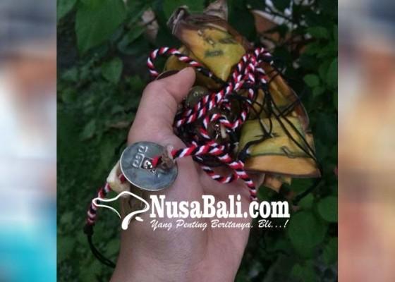 Nusabali.com - krama-nunas-sesikepan-benang-tri-datu-berisi-suna-jangu