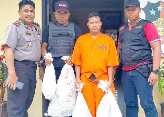 Nusabali.com - struk-pembelian-obat-anak-jadi-petunjuk