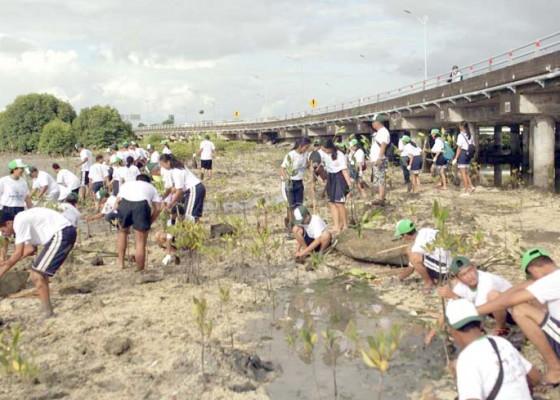 Nusabali.com - 10000-mangrove-ditanam-di-sekitar-pintu-tol-benoa
