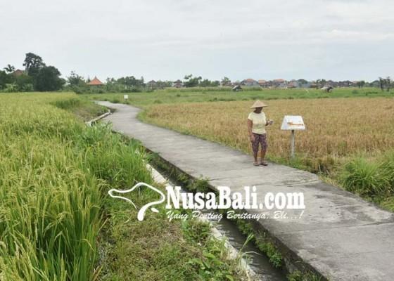 Nusabali.com - subak-padanggalak-dirancang-jadi-sekolah-alam