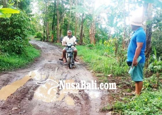 Nusabali.com - jalan-bebetin-sudaji-rusak-parah