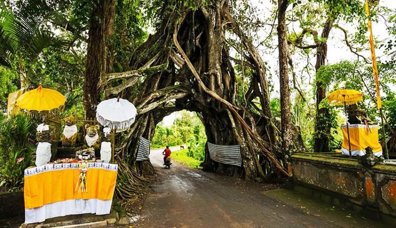 www.nusabali.com-mengapa-kebanyakan-orang-hindu-bali-membunyikan-klakson-ketika-lewat-di-tempat-yang-dianggap-keramat