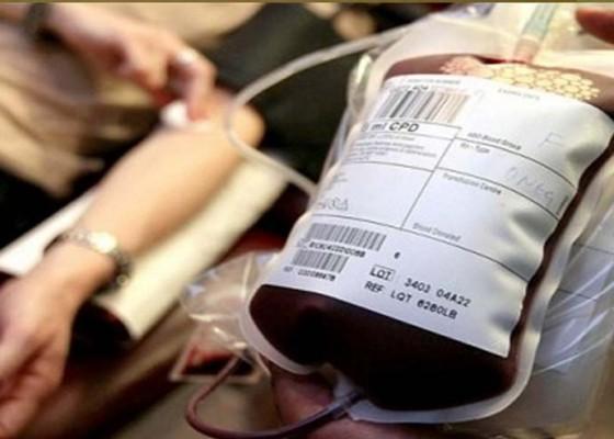 Nusabali.com - cari-donor-sampai-ke-seluruh-dunia