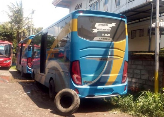 Nusabali.com - gianyar-dapat-bantuan-5-bus-dari-kemenhub