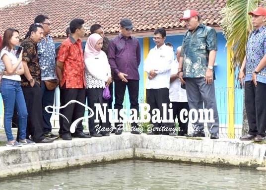 Nusabali.com - produksi-surplus-ikan-air-tawar-terancam-limbah