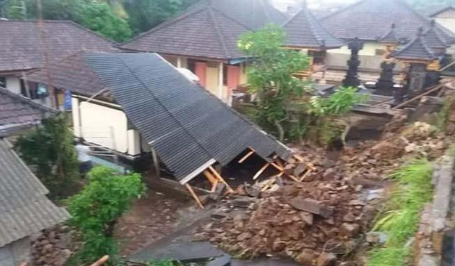www.nusabali.com-hujan-lebat-pohon-tumbang
