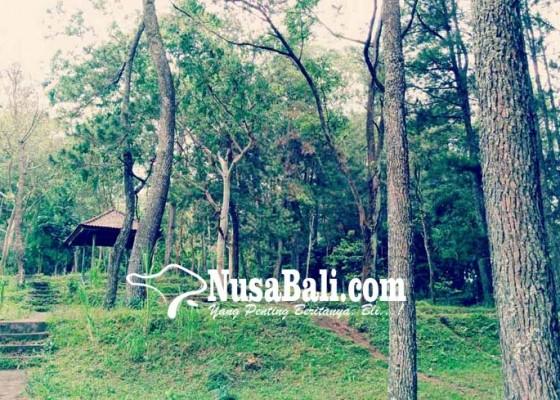 Nusabali.com - desa-nawa-kerti-rancang-wisata-hutan