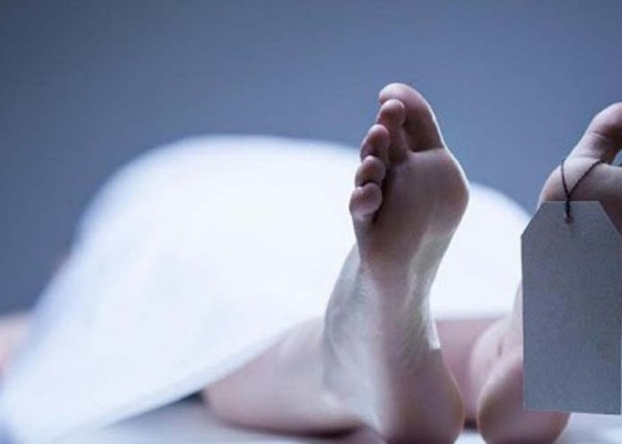 Nusabali.com - kaget-dengar-petir-nenek-tewas