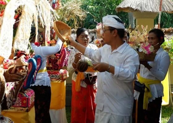 Nusabali.com - museum-subak-digelar-pecaruan