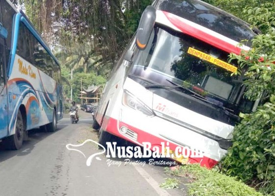 Nusabali.com - bus-masuk-got-picu-arus-krodit