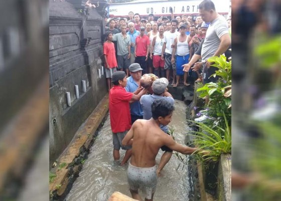Nusabali.com - balita-13-bulan-tewas-terseret-arus-di-saluran-irigasi