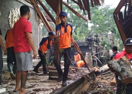 Nusabali.com - hujan-deras-beringin-tua-tumbang