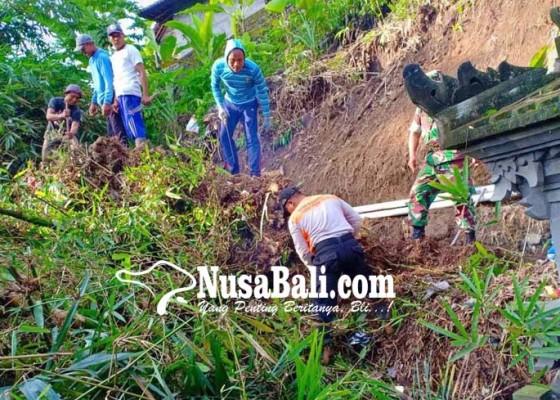 Nusabali.com - petani-suyak-aya-mulai-garap-lahan