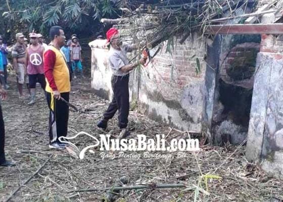 Nusabali.com - permandian-banjar-papung-tertimbun-rumpun-bambu
