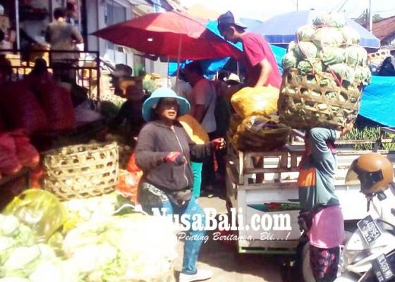 Nusabali.com - musim-hujan-harga-sayur-sayuran-terkerek