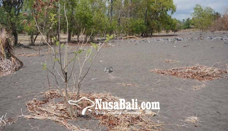 www.nusabali.com-setra-tukad-besi-tertimbun-pasir