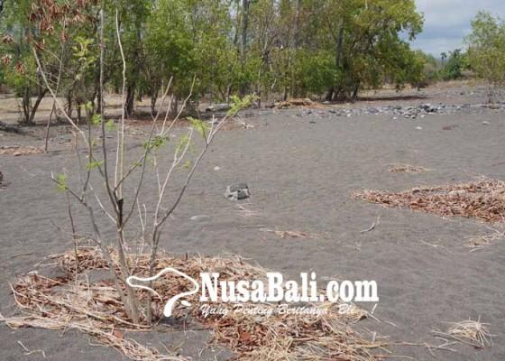Nusabali.com - setra-tukad-besi-tertimbun-pasir