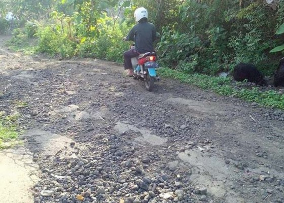 Nusabali.com - warga-lokapaksa-keluhkan-jalan-rusak