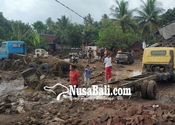 Nusabali.com - banjir-bandang-belasan-sapi-dan-babi-hanyut