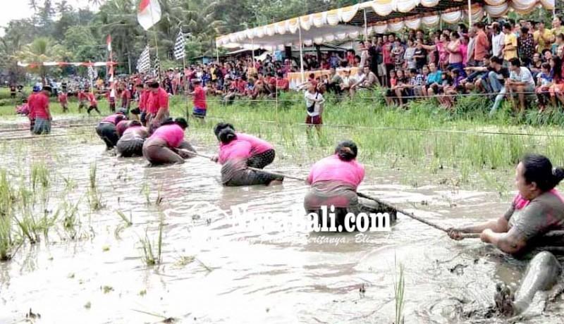 www.nusabali.com-hut-desa-duda-timur-tarik-tambang-di-lumpur