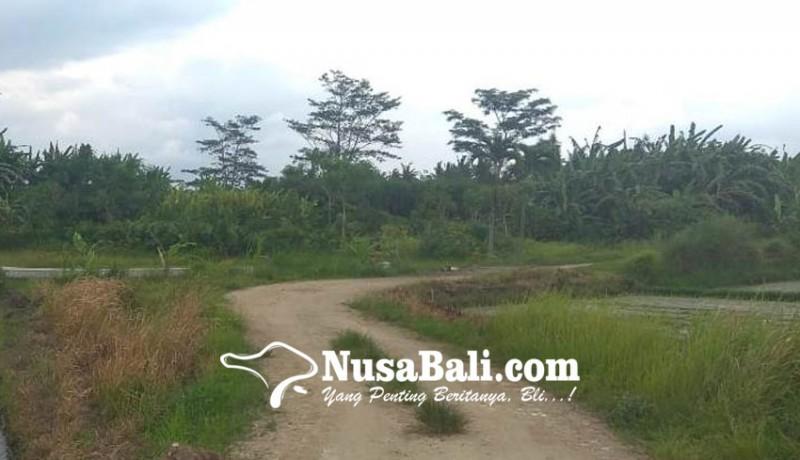www.nusabali.com-pembangunan-taman-bung-karno-dicicil