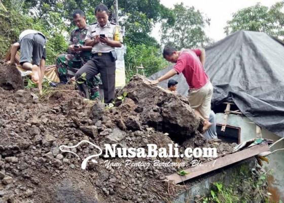 Nusabali.com - rumah-dan-sanggahnya-terkoyak-satu-keluarga-terpaksa-ngungsi