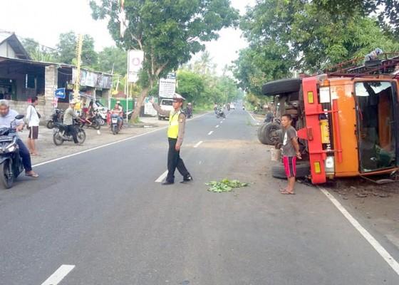 Nusabali.com - truk-pakan-babi-terguling-di-patas