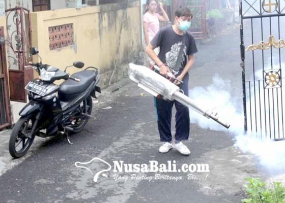 Nusabali.com - dinas-kesehatan-gencarkan-fogging