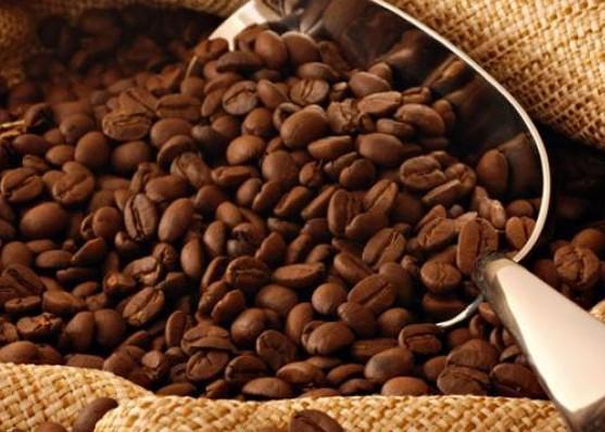 Nusabali.com - penjualan-kopi-turun-hingga-40-persen