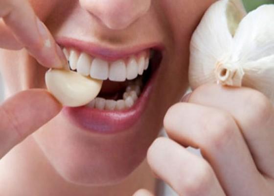 Nusabali.com - kesehatan-bawang-putih-berkhasiat