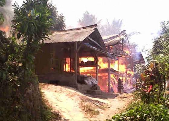 Nusabali.com - kandang-ayam-terbakar-5000-pitik-terpanggang