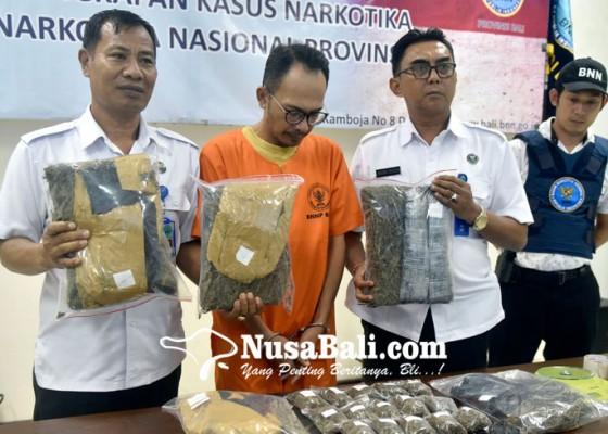 Nusabali.com - penyidik-kembali-sita-36-kg-ganja-dan-30-butir-ekstasi