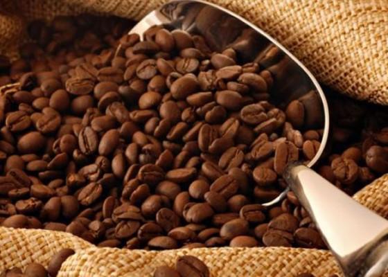 Nusabali.com - ekspor-kopi-bali-nebeng-lewat-surabaya