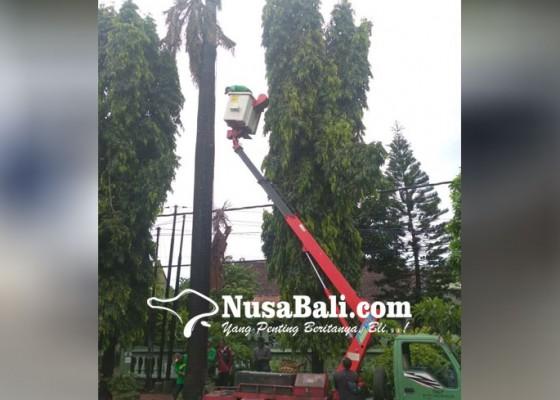 Nusabali.com - dlhk-gencar-lakukan-perompesan-dpupr-sasar-penanganan-titik-banjir