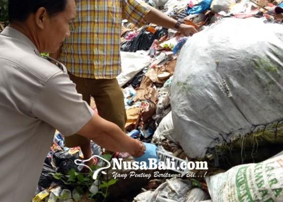 Nusabali.com - pemulung-temukan-tengkorak-kepala-manusia